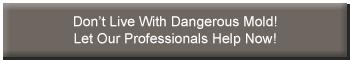 mold_damage_button